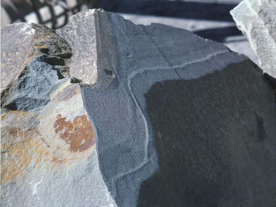 Arenarie grigie toscane